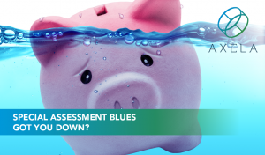 Special assessment blues